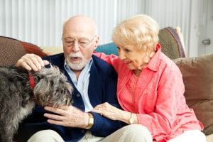 Senior couple with their dog.