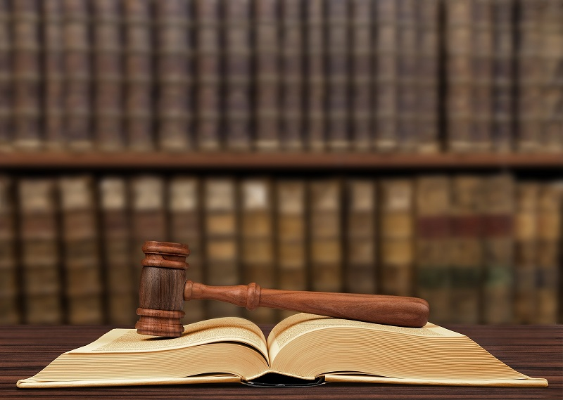 gavel resting on open book in library