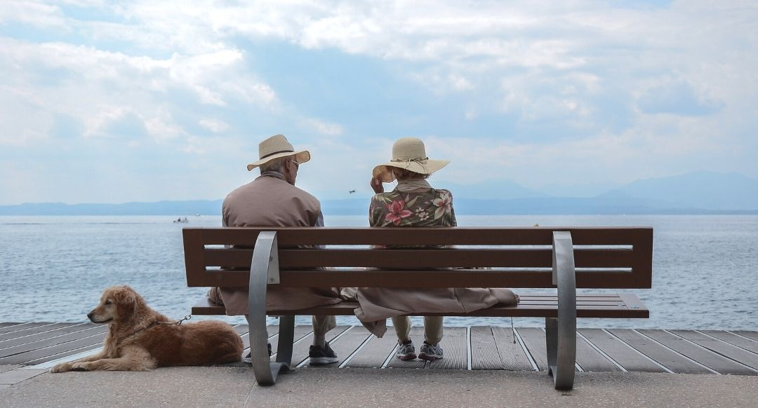 senior couple sitting at a bench by the water with a dog